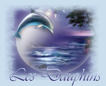 Les dauphins...